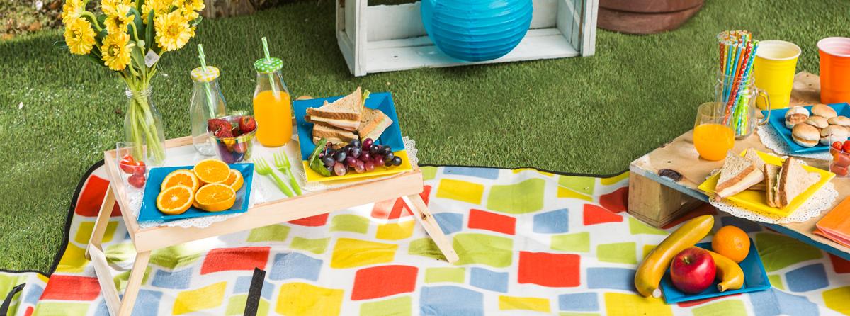 Manta picnic